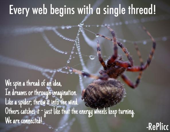Re Plicc's Spider Web